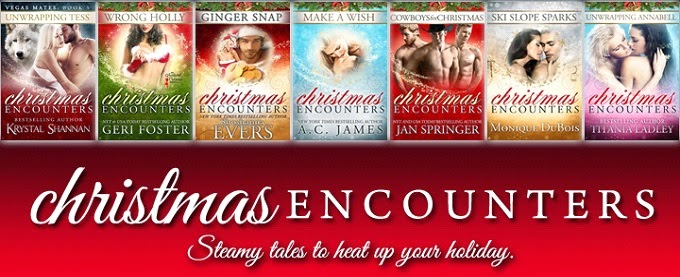 CHRISTMAS ENCOUNTERS Spotlight & Giveaway