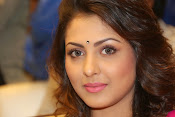 Madhu Shalini gorgeous looking photos-thumbnail-9