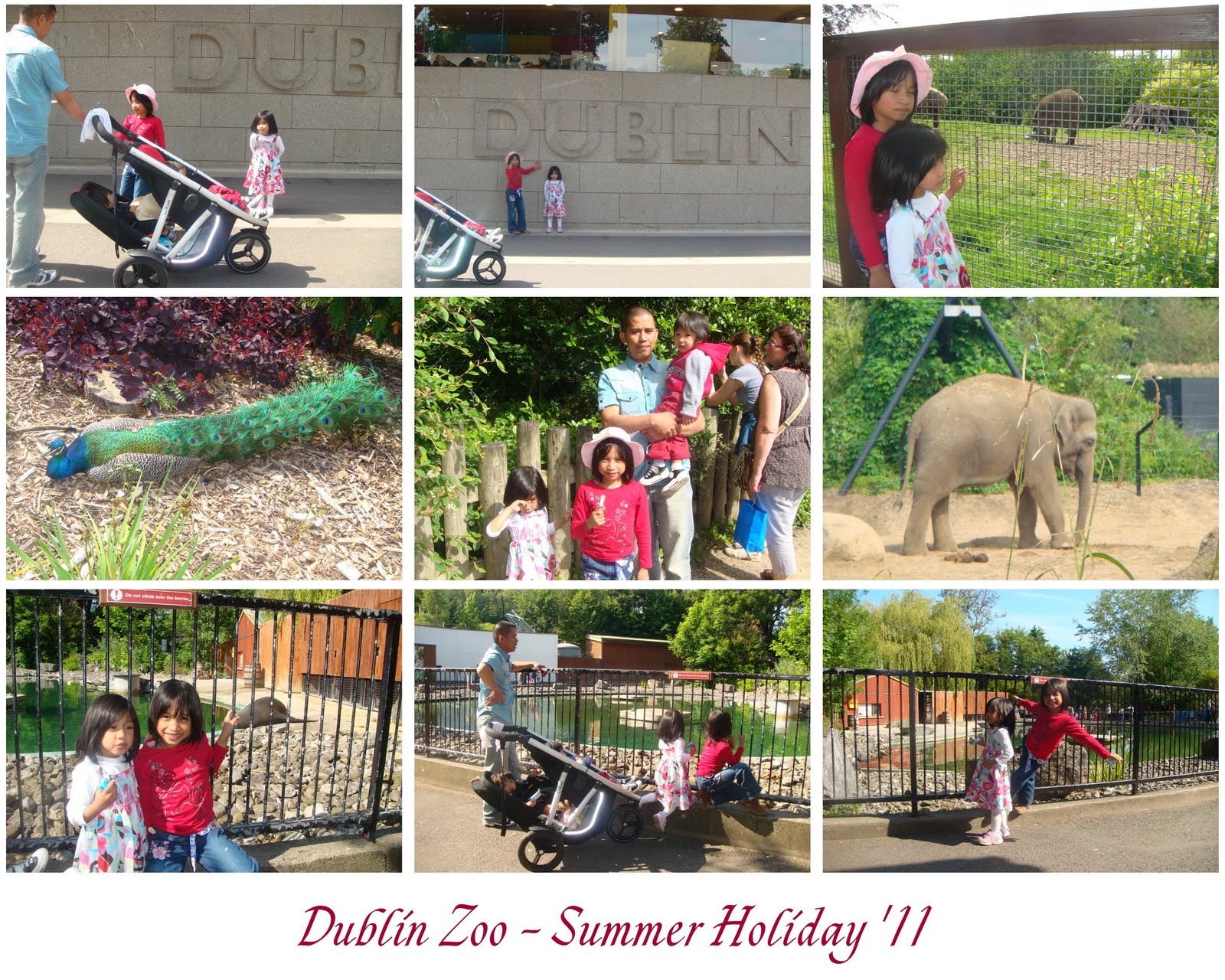 My Sweet Family: Dublin Zoo,Galway & etc