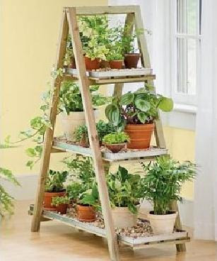 Eco friendly house plant stand plans in home for Eco indoor garden house