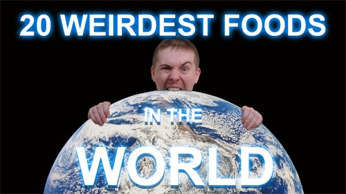 20 Weirdest Foods In The World