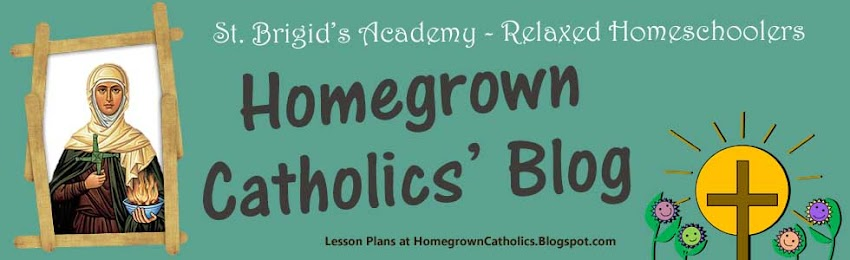 Homegrown Catholics - St Brigids Academy Blog