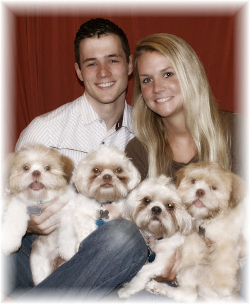 Our Shih-tzu Clan