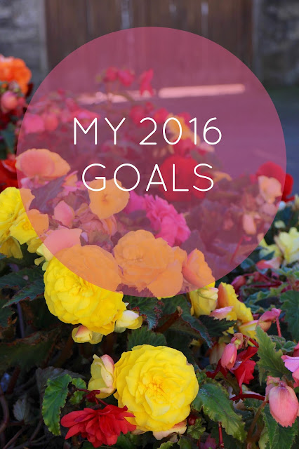 blog 2016 goals motivation