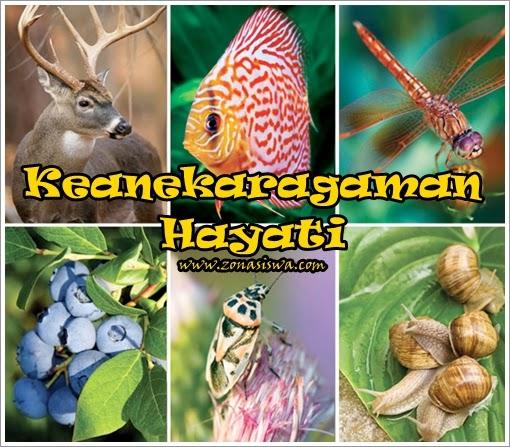 Keanekaragaman Hayati | www.zonasiswa.com