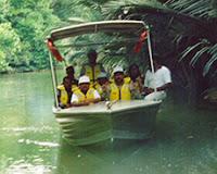 Brunei Mangrove Boat