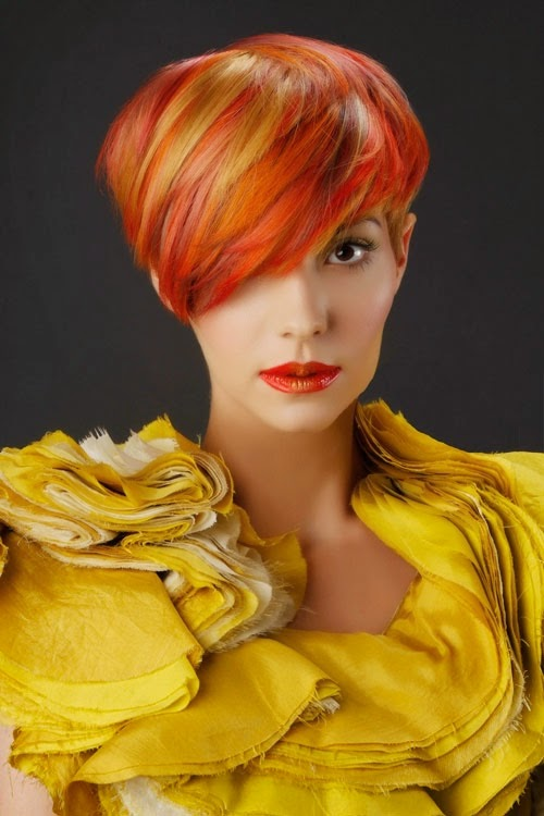 Colored Hairstyles 2014
