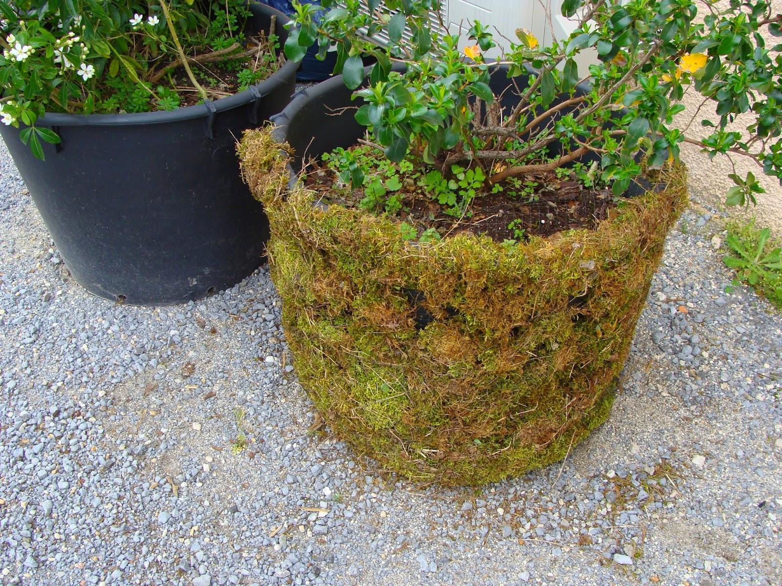Jardine et ris extra terrestre for Filet camouflage terrasse