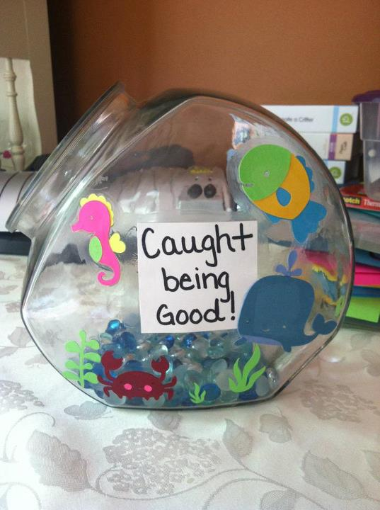 Hoots for second grade for Target fish bowl