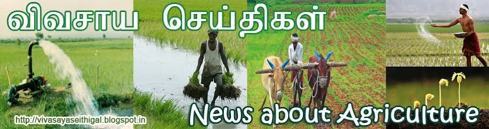 News about Agriculture