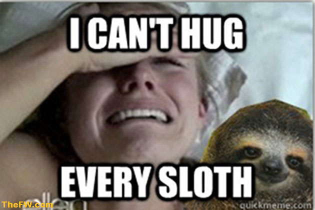 K Bell Sloth a day in the life: kel...