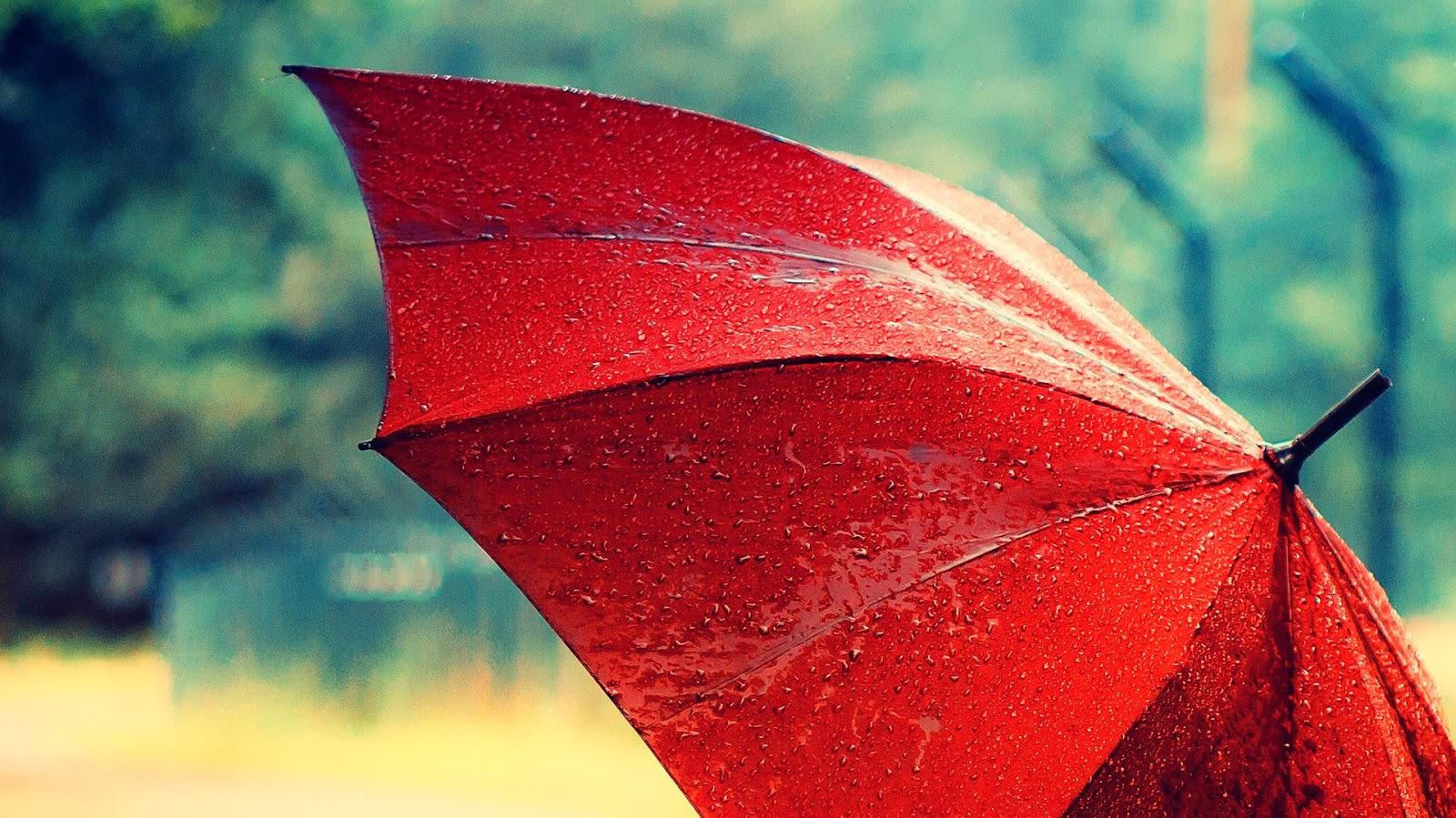 Popular Wallpaper Love Rain - in_rain_with_red_umbrella-HD  HD_884160.jpg