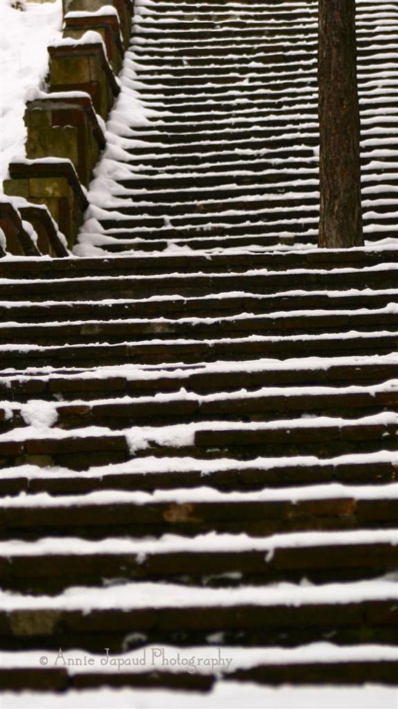 stairs in the snow
