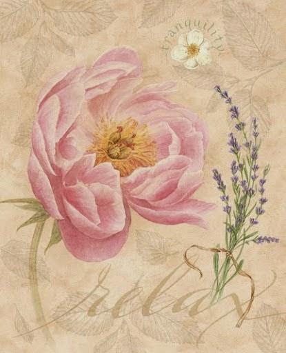 Lamina con flor rosa