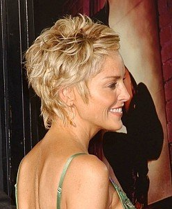 Short Hairstyle of 2011: Short Shag Hairstyle For Women 2011