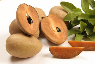 Health Benefits of Sapodilla or Chico Fruit