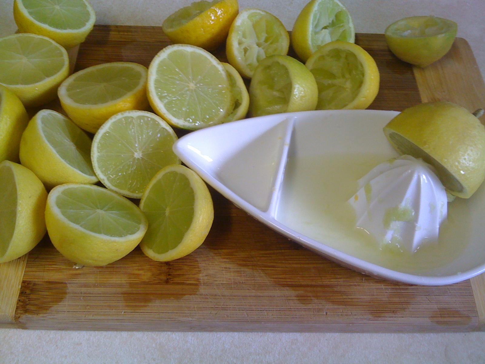 my garden feast: Lime Cordial
