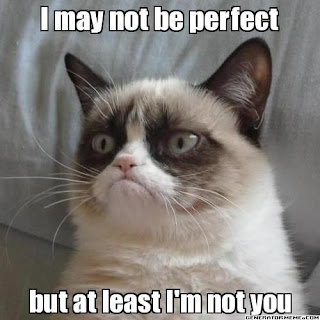 grumpy cat at least i'm not you, grumpy cat may not be perfect, grumpy cat meme, funny animal, sassy pictures