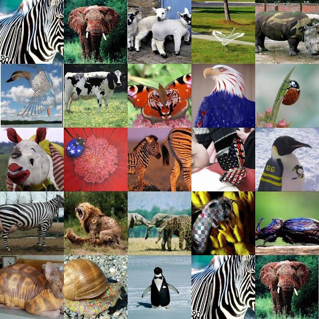 Animal Collage