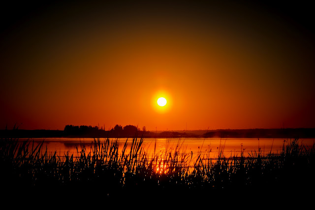 edmonton, alberta, canada, sunrise, lake, reeds, midas, touch, david, waddington