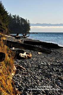Best Places to See in BC - French Beach Provincial Park