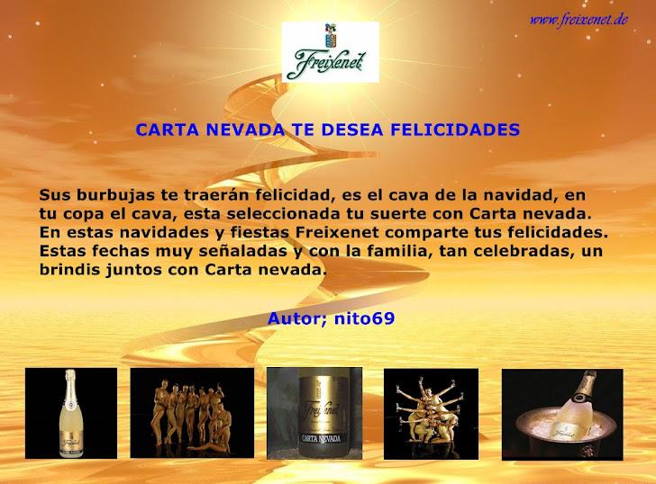 CARTA NEVADA