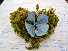 Hydrangea Moss Heart