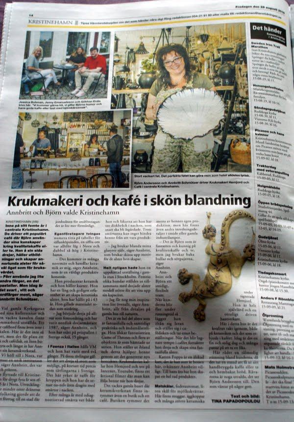 Artiklel i länstidningen 2015-08-28