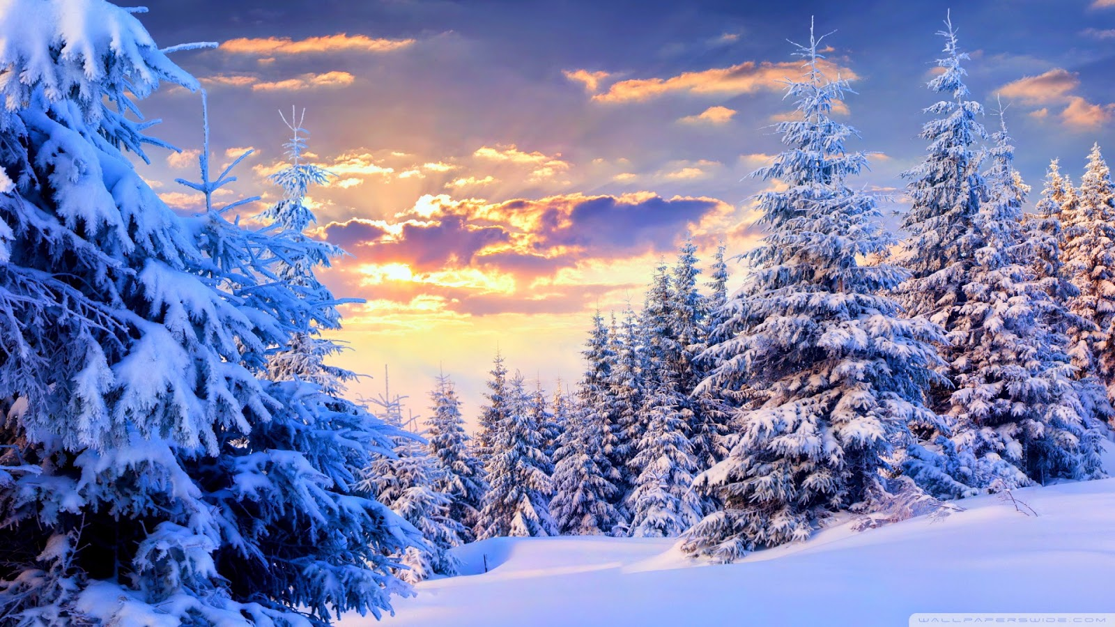 Wallpapers wide march 2015 - Snowy wallpaper ...