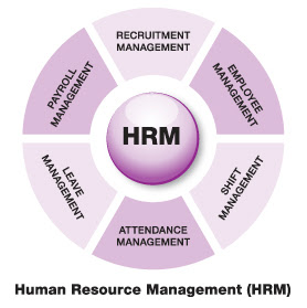 the role and importance of human resource management in an organization Sometimes, the hr department plays an active role in preparing the business and marketing plans for the organisation too any organisation, without a proper setup for hrm is bound to suffer from serious problems while managing its regular activities for this reason, today, companies must put a lot of effort and energy into setting up a.