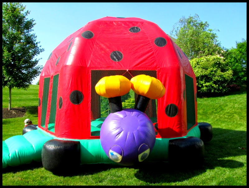 Ladybug Bounce House