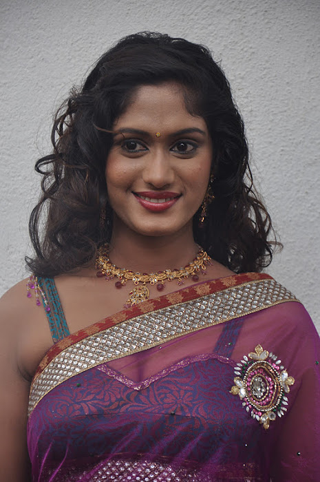 lavanya spicy transparent saree photo gallery
