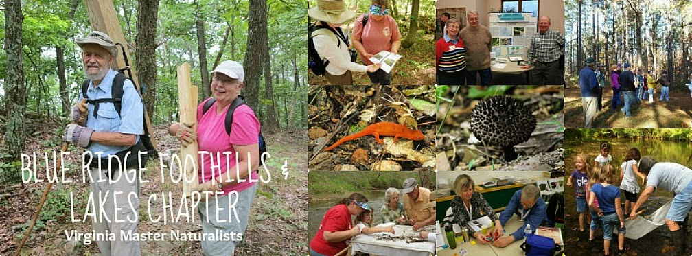 Blue Ridge Foothills & Lakes Virginia Master Naturalists