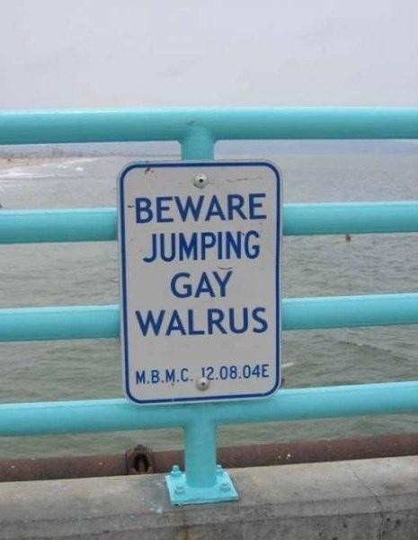 funny animal warning