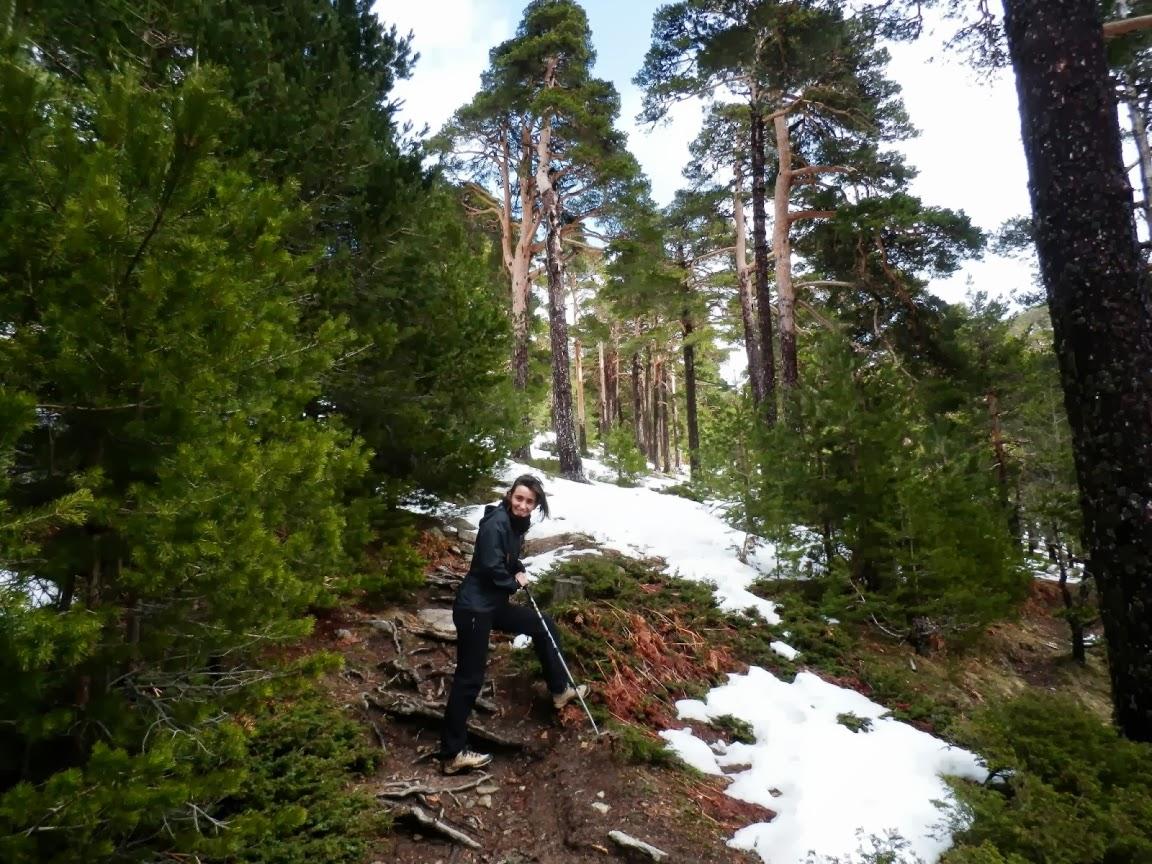 Una-subida-de-la-ruta-del-Camino-Schmidt-en-la-Sierra-de-Guadarrama