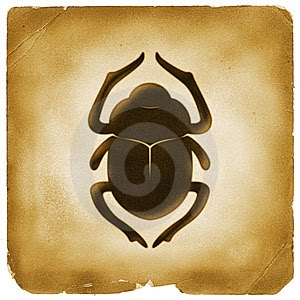 scarab maskolis