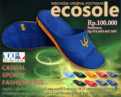 ecosole indonesia original