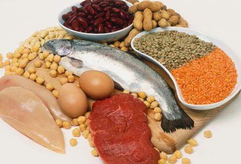 the high protein diet myth