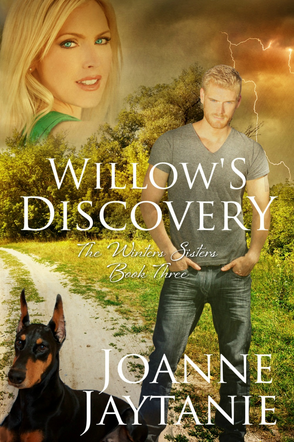 Willow's Discovery, The Winters Sisters, Book Three