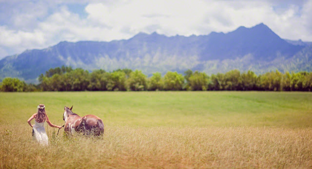 kauai destination wedding, best kauai wedding destinations, top kauai destination wedding locations, kauai mountain wedding