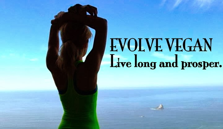 Evolve Vegan