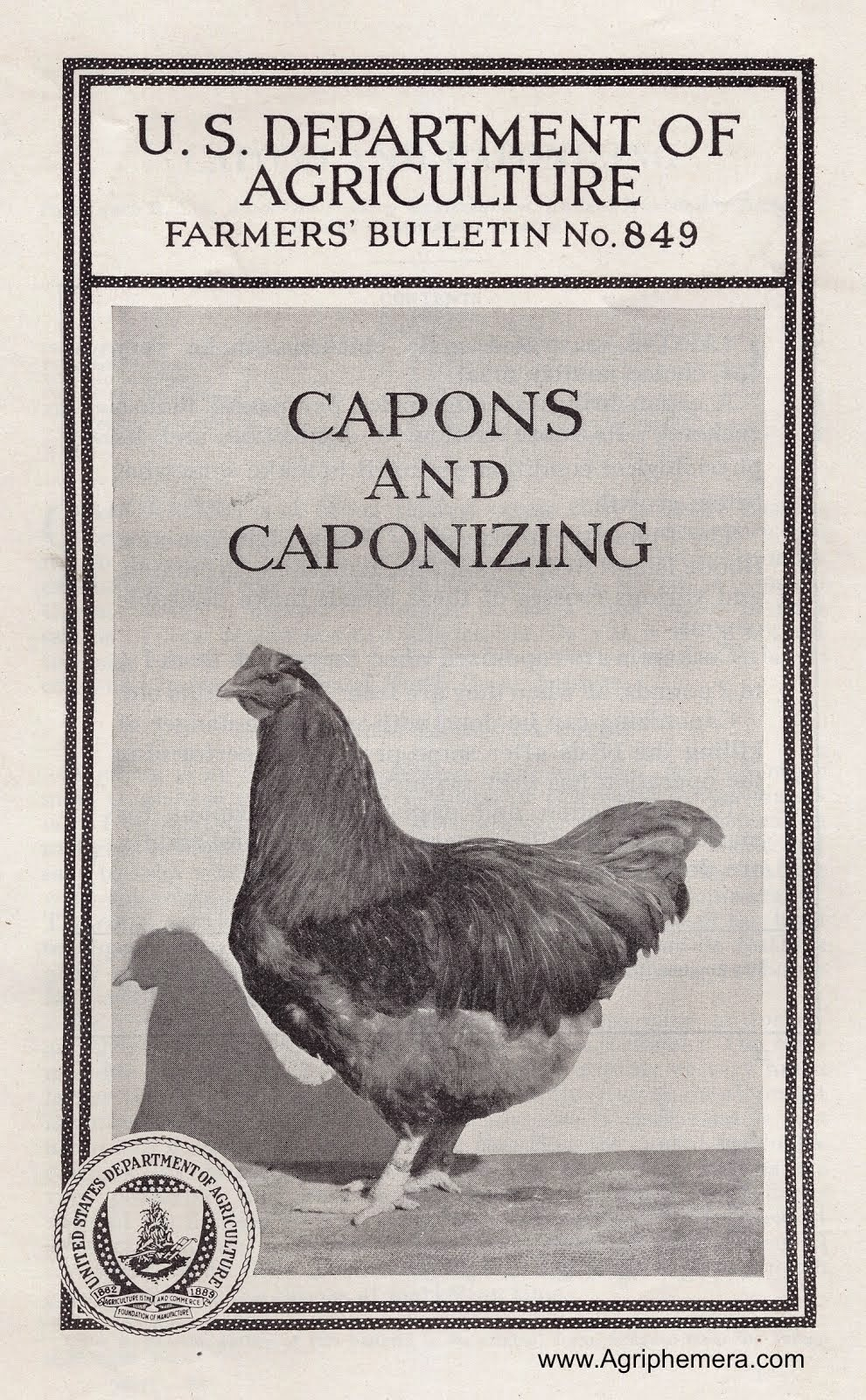 Capons And Caponizing (1932)