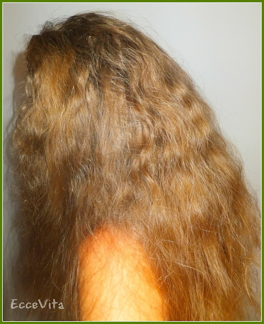 Picture of My Long Hair - Water Only Hair Washing Experiment Final Update