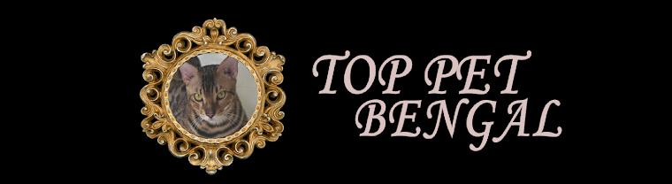 Top Pet Bengals