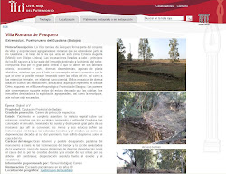 Lista Roja del Patrimonio: Villa romana de Pesquero (Pueblonuevo del Guadiana)