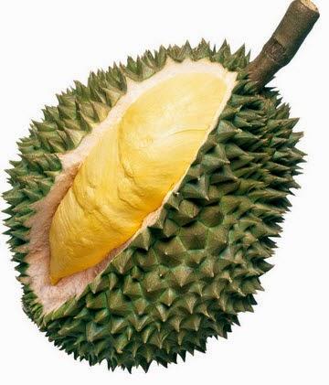 Memilih Buah Durian Matang Berkualitas