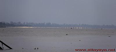 Mengejar Bono Sungai Kampar