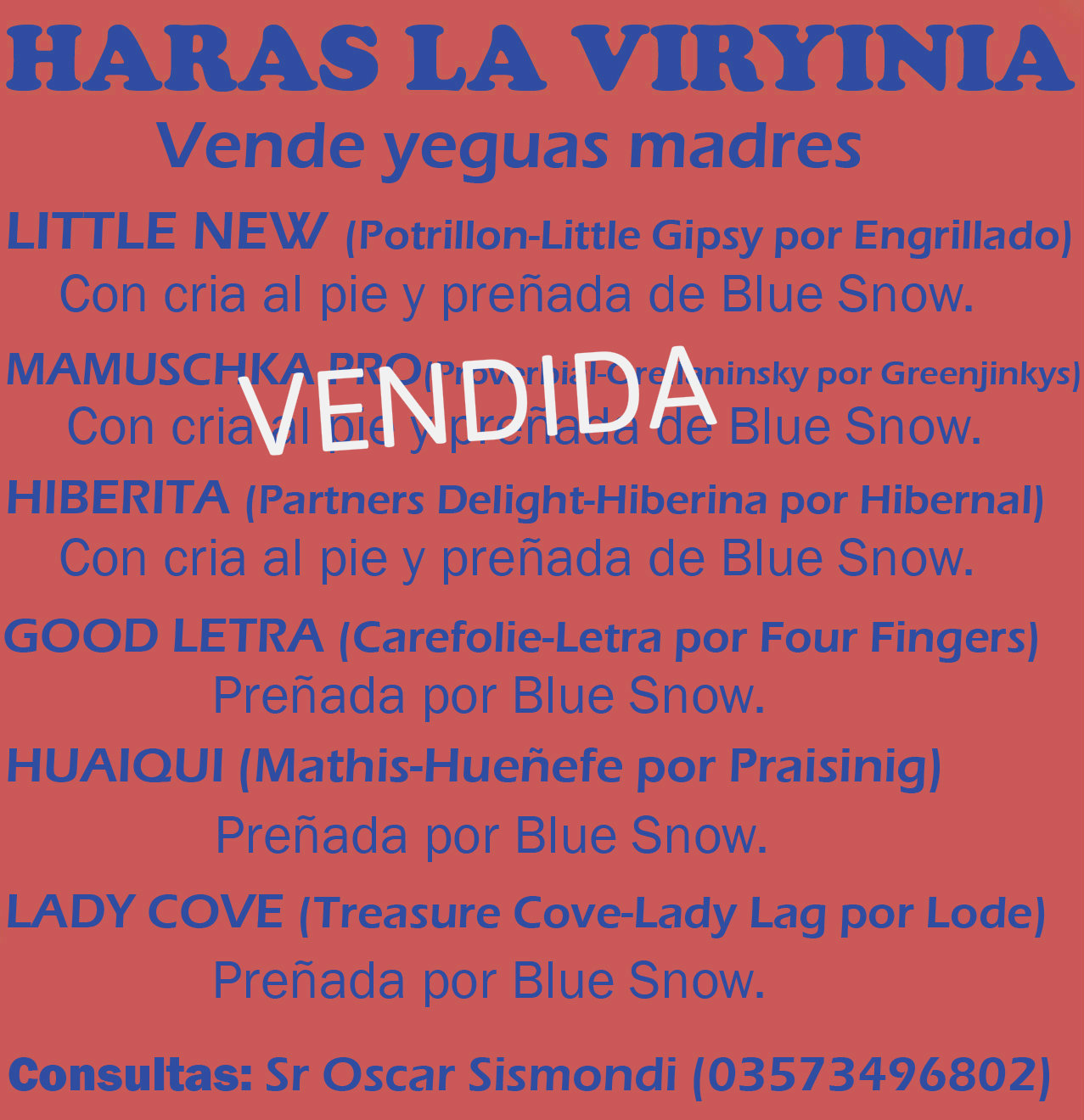 HS LA VIRYINIA VENTA MADRES