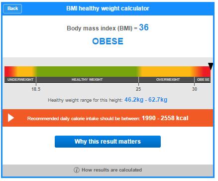 Jom Kurus! Ketahui BMI Anda