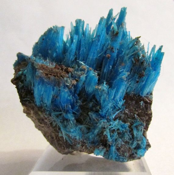 Chalcanthite (primary), The Planet Mine, La Paz Co., Arizona
